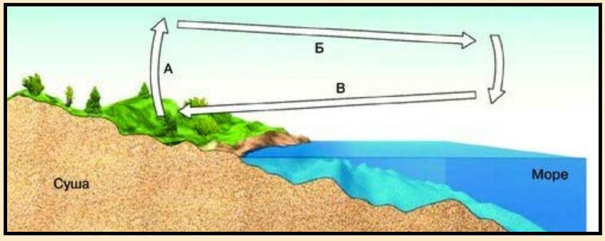 Схема ветров на побережье