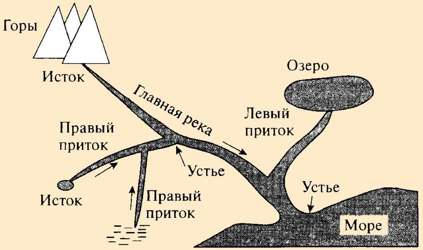Речная система: система реки